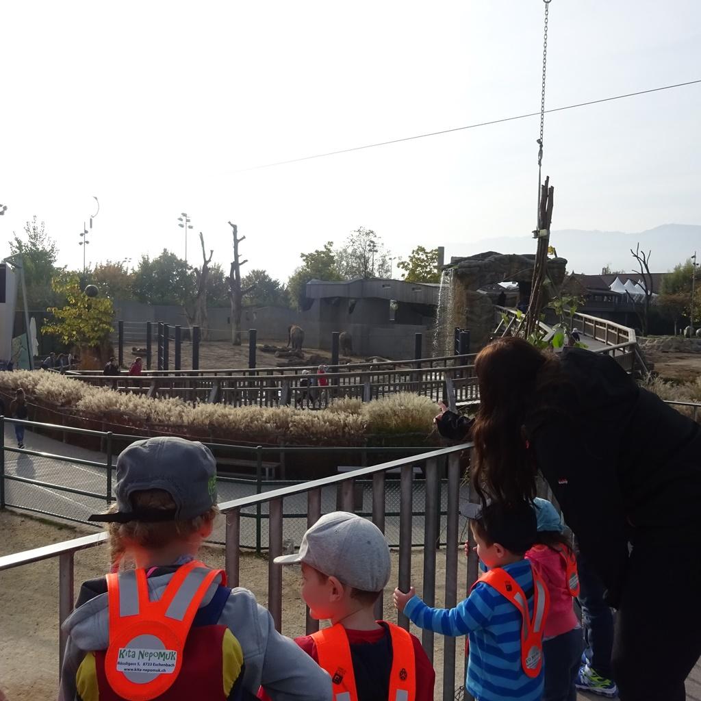 18.10.15-19_projektwoche-zoo_16